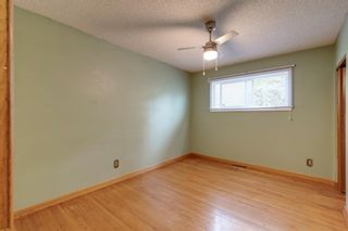 Photo 17: 2935 Burgess Drive NW in Calgary: Brentwood Detached for sale : MLS®# A1132281