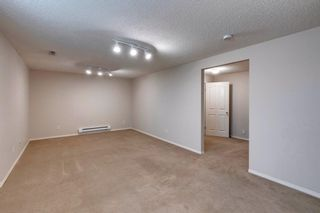 Photo 38: 131 Citadel Crest Green NW in Calgary: Citadel Detached for sale : MLS®# A1124177