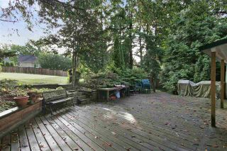 Photo 17: 2602 CAMPBELL Avenue in Abbotsford: Central Abbotsford House for sale : MLS®# R2524225
