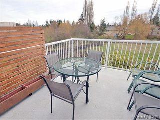 Photo 15: 513 Caselton Pl in VICTORIA: SW Royal Oak House for sale (Saanich West)  : MLS®# 636074