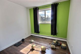 Photo 7: 102 11029 84 Street in Edmonton: Zone 09 Condo for sale : MLS®# E4238690