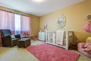 Photo 10: 24903 108 Avenue in Maple Ridge: Thornhill House for sale : MLS®# R2038664