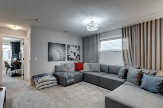 Photo 21: 361 Chinook Gate Close: Airdrie Detached for sale : MLS®# A1052473