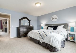 Photo 30: 95 Tipping Close SE: Airdrie Detached for sale : MLS®# A1099233