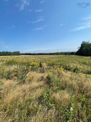 Photo 5: Lot Little Harbour Road in Kings Head: 108-Rural Pictou County Vacant Land for sale (Northern Region)  : MLS®# 202122504