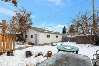 Photo 27: 255 Maitland Crescent NE in Calgary: Marlborough Park Detached for sale : MLS®# A1061446