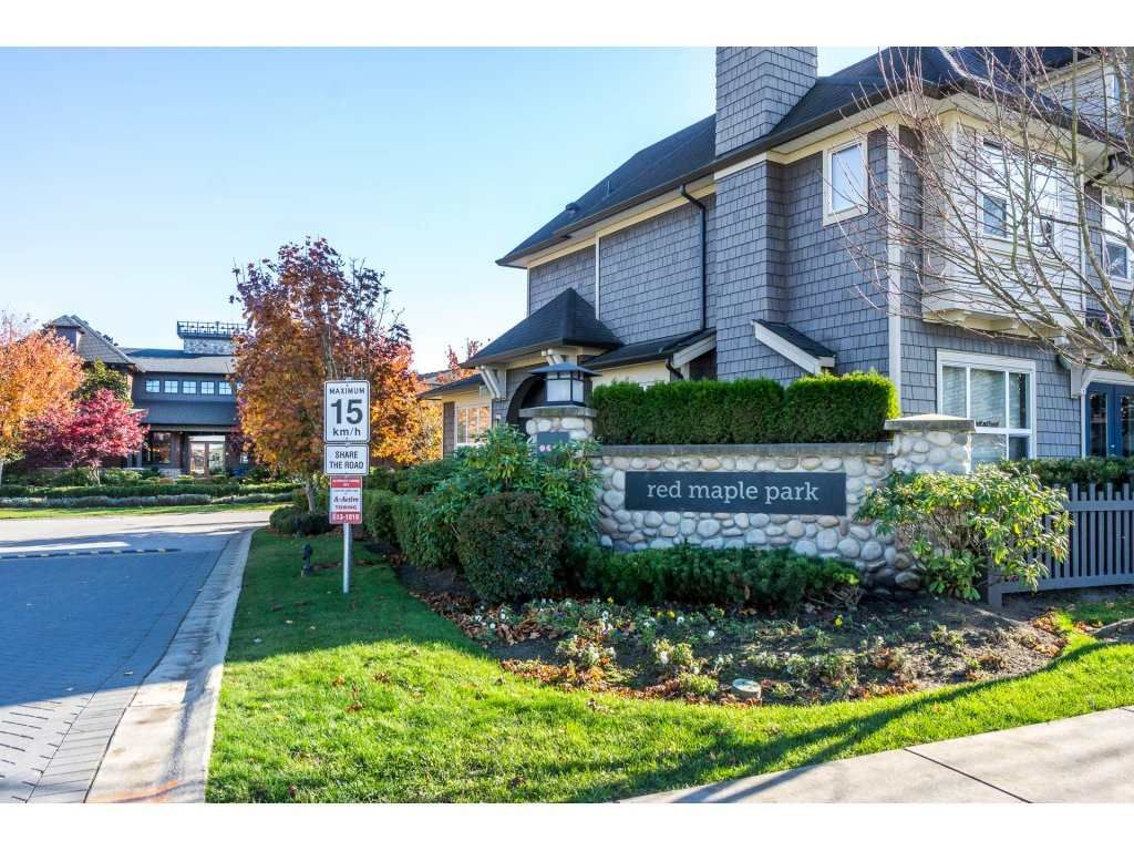 "Main Photo: 153 7938 209 Street in Langley: Willoughby Heights Townhouse for sale in ""RED MAPLE PARK"" : MLS®# R2229009"