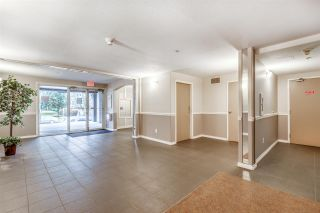 """Photo 3: 315 2375 SHAUGHNESSY Street in Port Coquitlam: Central Pt Coquitlam Condo for sale in """"CONNAMARA PLACE"""" : MLS®# R2537230"""