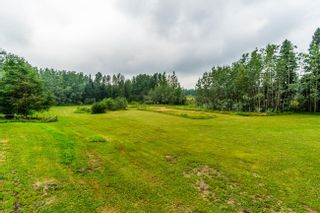 Photo 33: 3035 UPPER FRASER Road in Prince George: Giscome/Ferndale House for sale (PG Rural East (Zone 80))  : MLS®# R2540494