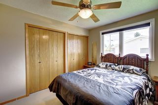 Photo 11: 3111 RAE Crescent SE in Calgary: Albert Park/Radisson Heights Detached for sale : MLS®# C4258934