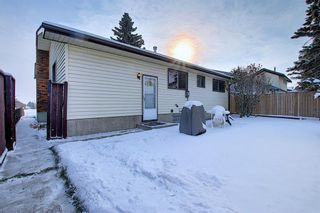 Photo 22: 4323 49 Street NE in Calgary: Whitehorn Detached for sale : MLS®# A1043612
