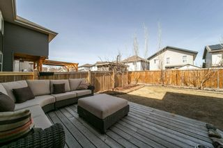 Photo 31: 891 HODGINS Road in Edmonton: Zone 58 House for sale : MLS®# E4261331