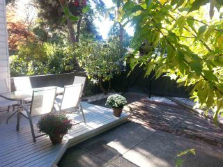 """Photo 17: 11 3350 ROSEMONT Drive in Vancouver: Champlain Heights Townhouse for sale in """"APENWOOD"""" (Vancouver East)  : MLS®# R2233904"""