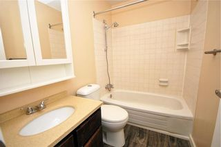 Photo 14: 123 Paddington Road in Winnipeg: River Park South Residential for sale (2F)  : MLS®# 202119787