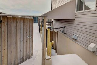 Photo 46: 268 Springmere Way: Chestermere Detached for sale : MLS®# C4287499