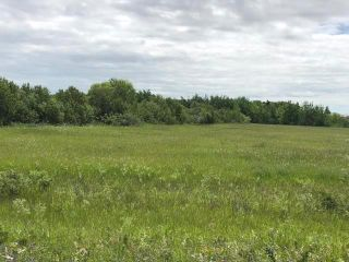 Photo 42: 1028 Governor Road in St Laurent: RM of St Laurent Residential for sale (R19)  : MLS®# 202004514