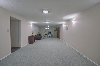Photo 29: 3708 108 Street in Edmonton: Zone 16 House for sale : MLS®# E4255030