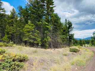 Photo 8: 9621 TRANQUILLE CRISS CRK ROAD in Kamloops: Red Lake Lots/Acreage for sale : MLS®# 164124