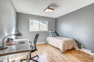 Photo 28: 543 Lake Newell Crescent SE in Calgary: Lake Bonavista Detached for sale : MLS®# A1081450