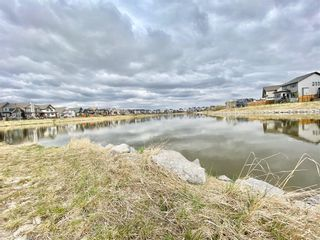 Photo 45: 315 Reunion Green NW: Airdrie Detached for sale : MLS®# A1077177