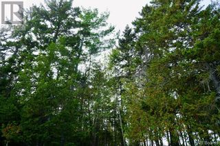 Photo 10: 2 Hills Point Estates in Oak Bay: Vacant Land for sale : MLS®# NB049865