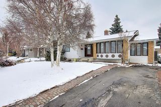 Photo 46: 5916 Dalcastle Drive NW in Calgary: Dalhousie Detached for sale : MLS®# A1085841