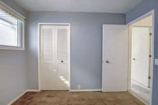 Photo 29: 132 Mardale Crescent NE in Calgary: Marlborough Detached for sale : MLS®# A1146772