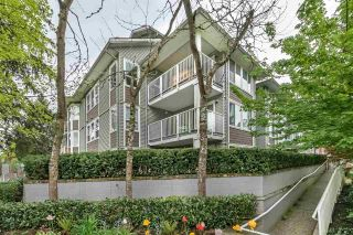 "Photo 17: 104 2268 WELCHER Avenue in Port Coquitlam: Central Pt Coquitlam Condo for sale in ""Sagewood"" : MLS®# R2263665"