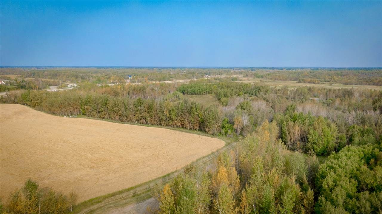 Photo 6: Photos: 0 26225 TWP Rd 511: Rural Parkland County Rural Land/Vacant Lot for sale : MLS®# E4216203