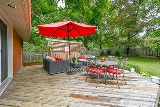 Photo 39: 39 Maple Avenue in Flamborough: House for sale : MLS®# H4063672