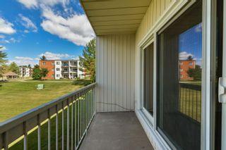 Photo 27: 205 11430 40 Avenue in Edmonton: Zone 16 Condo for sale : MLS®# E4258318