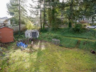 Photo 4: 1635 E 12th St in COURTENAY: CV Courtenay East House for sale (Comox Valley)  : MLS®# 801658