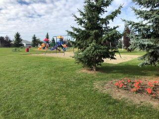 Photo 9: #50 10770 Winterburn Road in Edmonton: Zone 59 Mobile for sale : MLS®# E4263541
