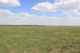 Photo 8: 225009A Range Road 251: Rural Wheatland County Detached for sale : MLS®# C4296306