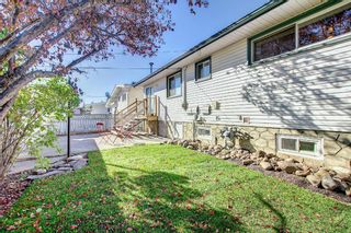 Photo 40: 9804 Alcott Road SE in Calgary: Acadia Detached for sale : MLS®# A1153501