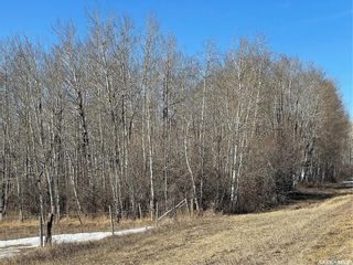 Photo 21: 65 acres land in Preeceville: Lot/Land for sale : MLS®# SK848653