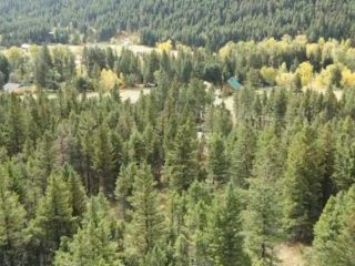 Photo 14: 9621 TRANQUILLE CRISS CRK ROAD in Kamloops: Red Lake Lots/Acreage for sale : MLS®# 164124