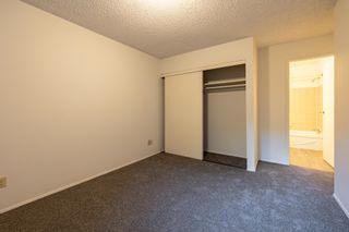 Photo 23: 104 4015 26 Avenue in Edmonton: Zone 29 Condo for sale : MLS®# E4259021