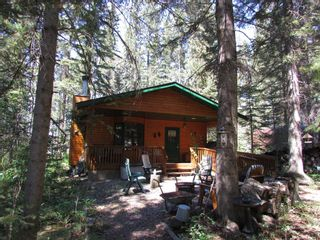 Photo 7: 6 Coyote Cove: Rural Mountain View County Detached for sale : MLS®# A1124823