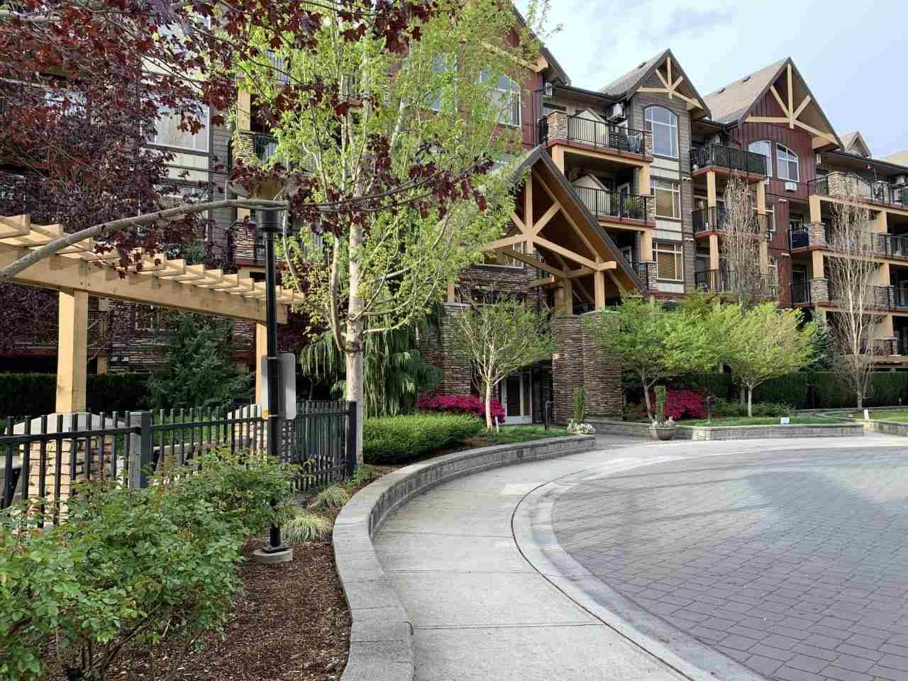 Main Photo: 569 8328 207A Street in Langley: Willoughby Heights Condo for sale : MLS®# R2573530