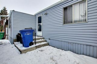 Photo 21: 128 Big Springs Drive SE: Airdrie Detached for sale : MLS®# A1065928