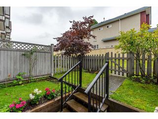 Photo 35: 61 9405 121 Street in Surrey: Queen Mary Park Surrey Townhouse for sale : MLS®# R2472241