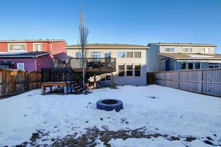 Photo 47: 280 WEST CREEK Drive: Chestermere Detached for sale : MLS®# A1062594
