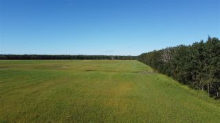 Photo 8: Twp 474 Hwy 795: Rural Wetaskiwin County Rural Land/Vacant Lot for sale : MLS®# E4211589