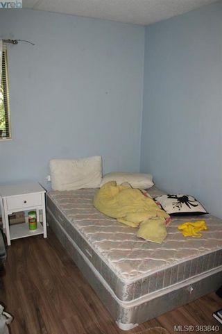 Photo 7: 119 900 Tolmie Ave in VICTORIA: SE Quadra Condo for sale (Saanich East)  : MLS®# 771380