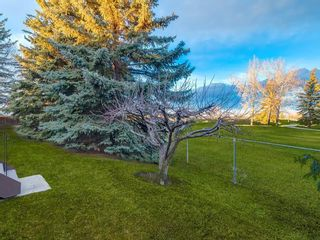 Photo 49: 587 WOODPARK Crescent SW in Calgary: Woodlands Detached for sale : MLS®# C4243103