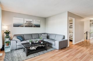 Photo 14: 508 Mckinnon Drive NE in Calgary: Mayland Heights Detached for sale : MLS®# A1154496