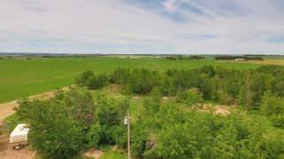 Photo 34: 55130 Rge. Rd. 265: Rural Sturgeon County House for sale : MLS®# E4248279