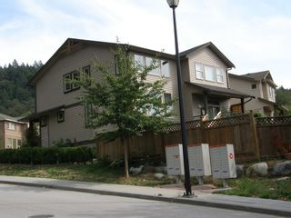 Photo 4: 10795 BEECHAM PLACE in MAPLE RIDGE: Home for sale : MLS®# V1138142
