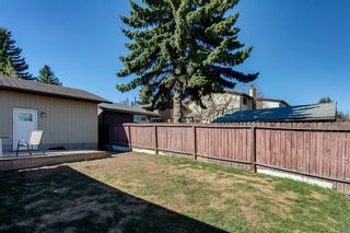 Photo 25: 11 Bedwood Place NE in Calgary: Beddington Heights Detached for sale : MLS®# A1145937